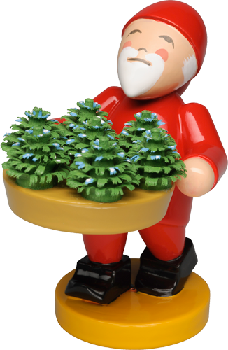Gnome with Little Plants